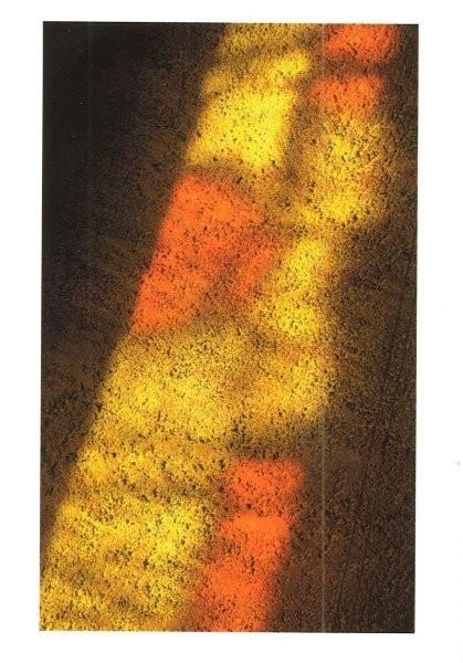 Vitrail ombres - Schatten der Kirchenfenster